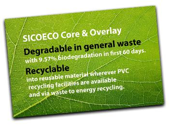Environmentally friendly card